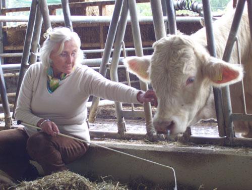 Linda Tellington-Jones mit Mastbullen