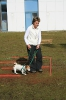 Training mit Linda Tellington-Jones Okt 2007_3